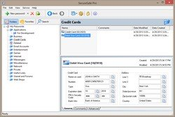 SecureSafe Pro Password Keeper Displays a Credit Card Data