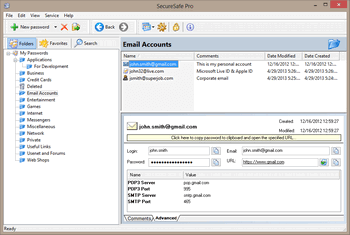SecureSafe Pro Password Manager - Main Window